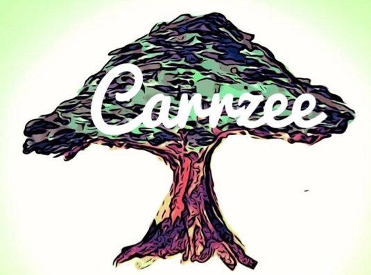 CarrZee Carbon